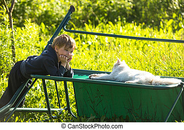 A little boy playing with a cat.
