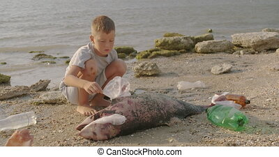 A little boy removes plastic bags from a dead dolphin lying on the beach. Environmental disaster concept