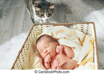 A little child lies in the basket with cat