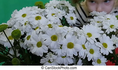 A little girl of two years is enjoying the aroma of chamomile. A bouquet of beautiful white flowers. Love
