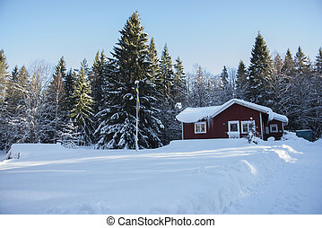 A little house in a winter scenery