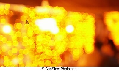 A little spider flying in the air - orange lights on a...
