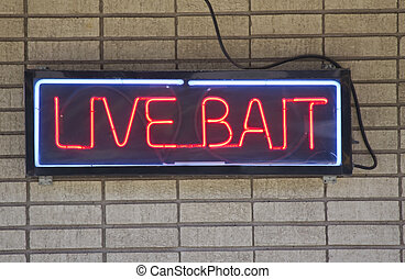 A Live Bait red neon sign on a brick wall outside of a bait and tackle fishing store.