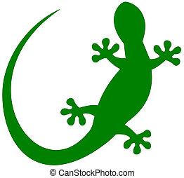 a lizard in green shadow