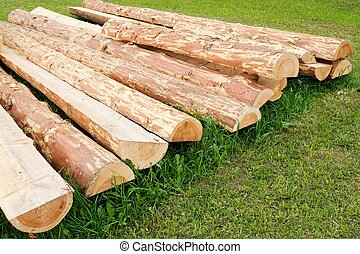 A log on green grass in garden