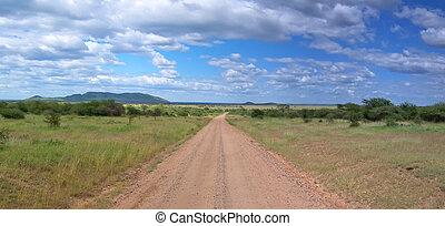 A lonely road track on the deep african savanna, Serengeti park, Tanzania, Panorama