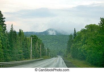 foggy mountain drive
