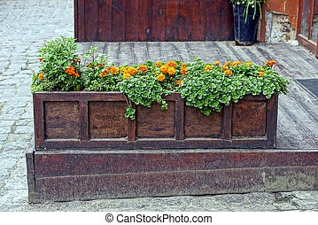 A long wooden box with flowers on the sidewalk near the house