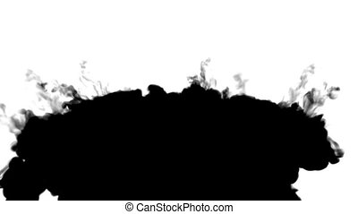 black ink flows on white moving in slow motion, ink or smoke...