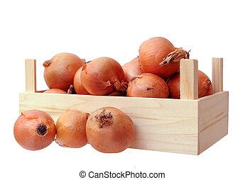 onions in case