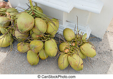 A lots of coconuts on the street for sell in Thailand market