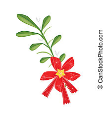 A Lovely Green Mistletoe with A Red Bow