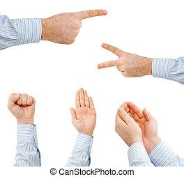 a, mão, de, a, homem negócios, mostrando, vário, sinais