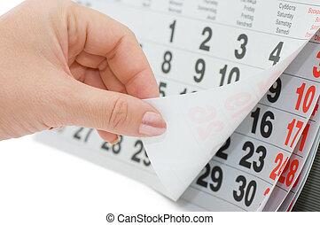 a, mão, overturns, calendário, folha, isolado, branco, fundo