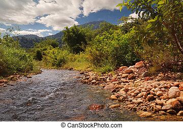 a, madeira, rio, com, pedras, ligado, costa, tailandia