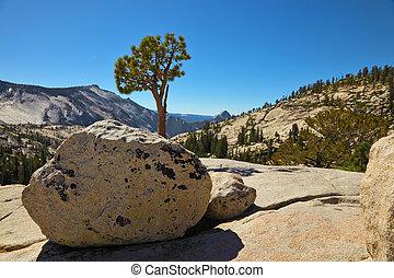 A magnificent mountain panorama  Yosemite