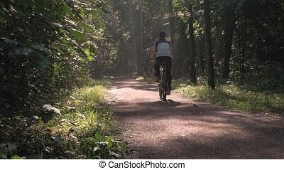 A male athlete is riding a bicycle through the sun, in a beautiful park. HD