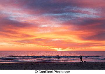 a man an a dog walking on the beach
