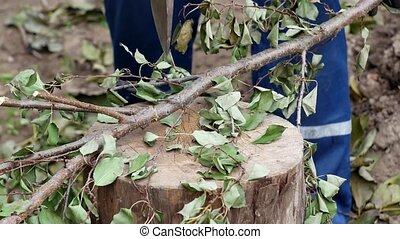 a man cuts branches with an ax, work at the dacha, close-up,...