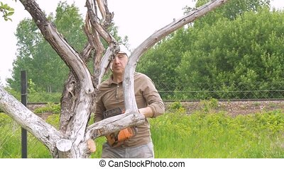 A man cuts off a branch with a gasoline saw, on a tree that withered.