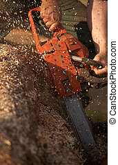 A man cutting tree with chainsaw.