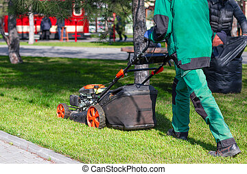 A man moves with an electrician to a lawnmower and mows green grass in the backyard. Garden cleaning services. Garden Supplies