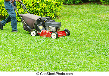 mowing the lawn - A man mowing the lawn