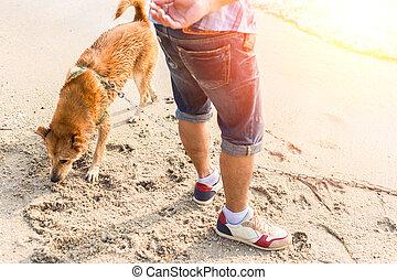 a man play with the dog on the beach.