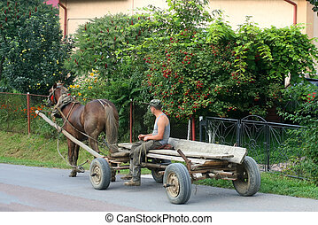 A man rides a cart with a harnessed horse.