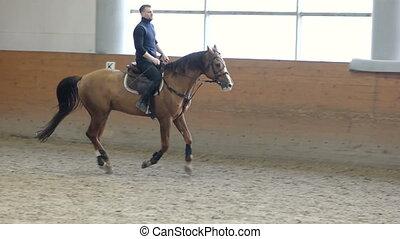 A man riding a brown horse around the arena. . Don horse...