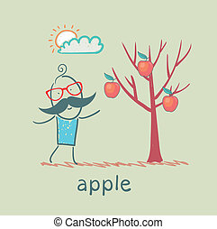 a man stands with a tree on which apples