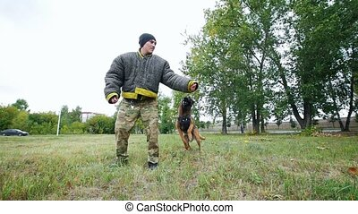 A man trains his dog to execute jump command and bite his...