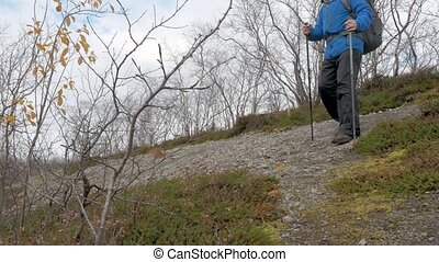 A man travels with a backpack in a mountain park. He goes down the path with special sticks.