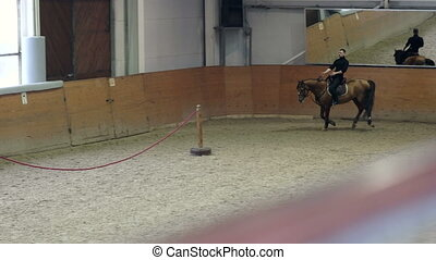 A man trick riding a horse on arena. Man doing stunts on...