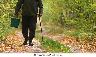 A man walks through the autumn forest