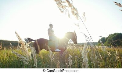 A man with an athletic build sitting on a horse in the middle of the field against the setting sun