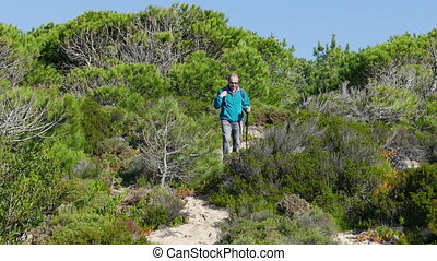 A Man with Backpack Walking on Forest Trail, sunny day