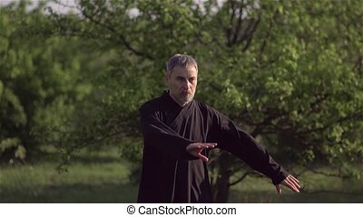 Martial artist practices tai Chi Taijiquan qigong in nature in a Park