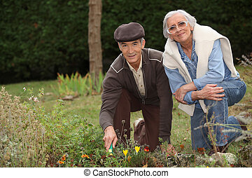 a mature couple gardening