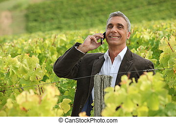 A mature man over the phone in a vineyard.