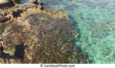 Mediterranean coast of Cyprus, fragment - A Mediterranean...