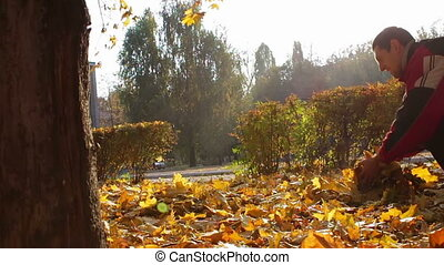 A men throws yellow leaves from the tree branches of trees in autumn park.