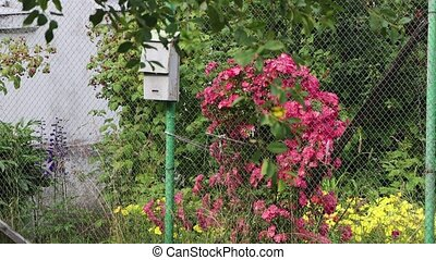 A metal gray mailbox stands among beautiful plantings. Red and yellow flowers grow nearby. In the background are green bushes and trees. 4K.