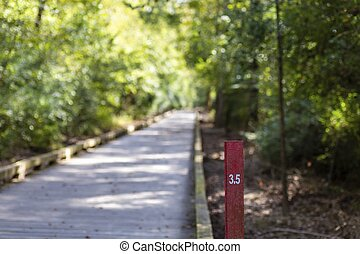 A mile marker on a fitness trail