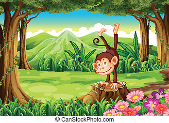 A monkey above the stump
