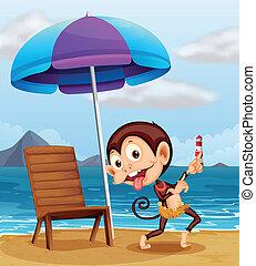 A monkey at the beach