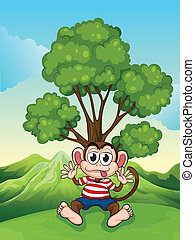 A monkey at the hilltop sitting under the tree
