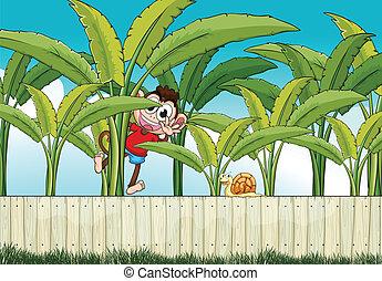 A monkey climbing at the banana plant - Illustration of a...