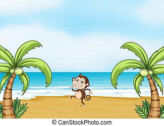A monkey dancing on a beach