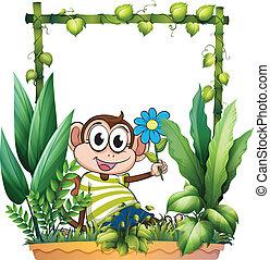 A monkey holding a flower